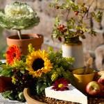 Høstens fineste bord dekker vi utendørs