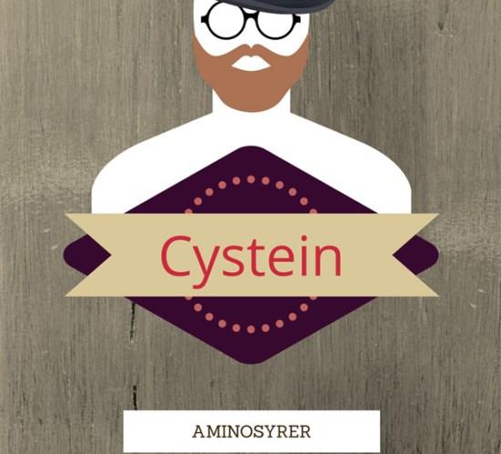 Ingeniørfruen-om-aminosyren-cystein