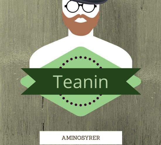 Ingeniørfruen-om-aminosyrer-Teanin