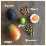 Smakskombinasjoner med mango