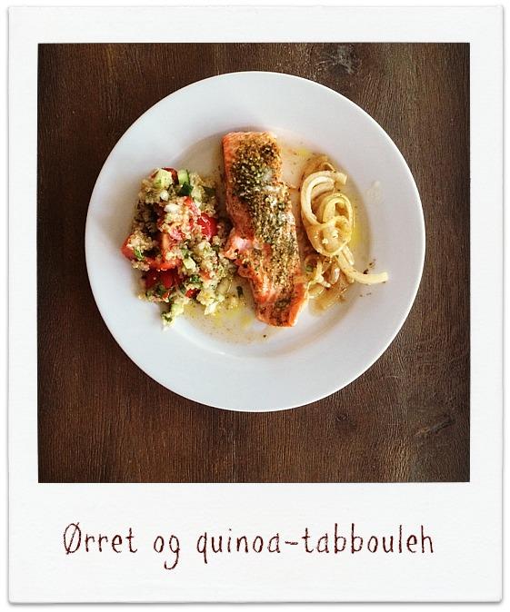 MIN-MATDAGBOK-Ørret-og-quinoa-tabbouleh