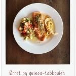 [MIN MATDAGBOK]Ørret…quinoa…tabbouleh