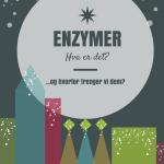 Hva er enzymer?