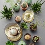 10 på topp grønne planter for kropp og sjel