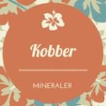 VITAMINER OG MINERALER: Kobber