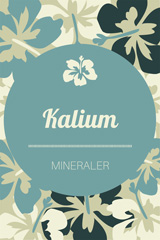 VITAMINER-OG-MINERALER-Kalium-liten