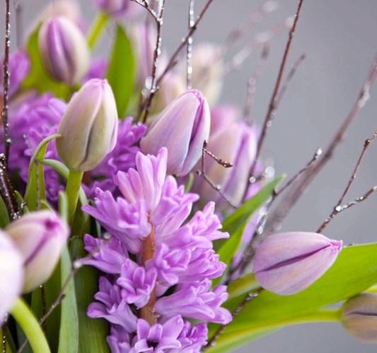 Vakker adventsbukett med lilla svibler og tulipaner ©FOTO Mester Grønn