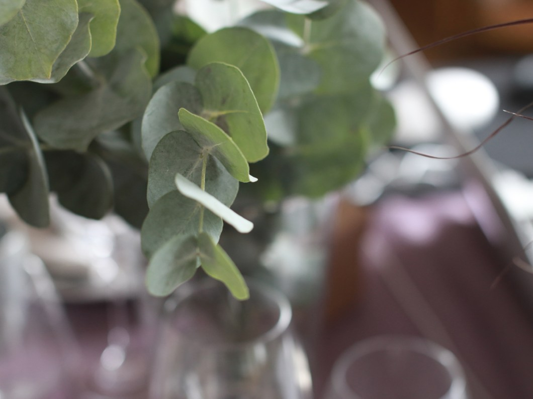 borddekking-med-eukalyptus