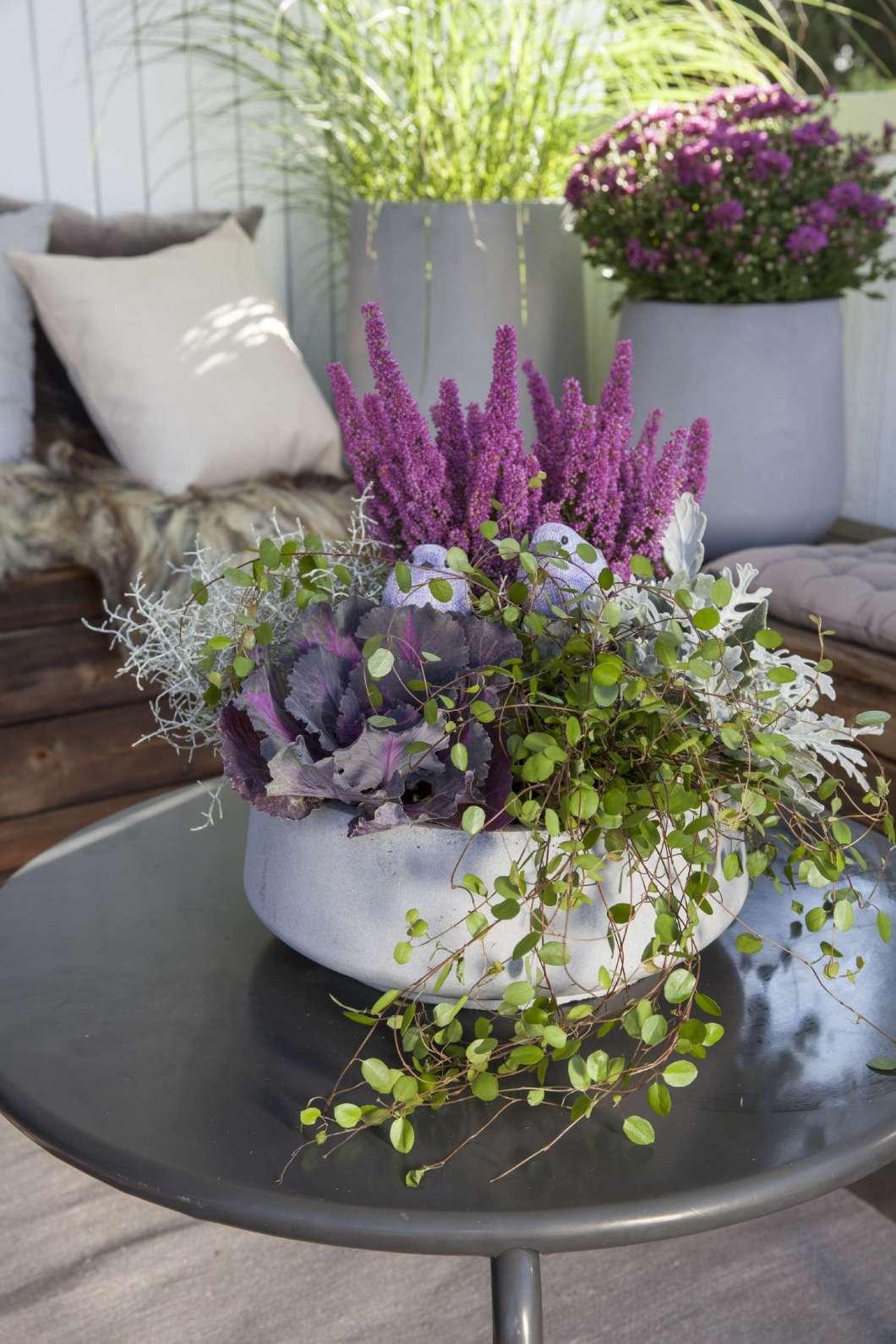 lilla_gra%cc%8att_gront_planter_terrassen