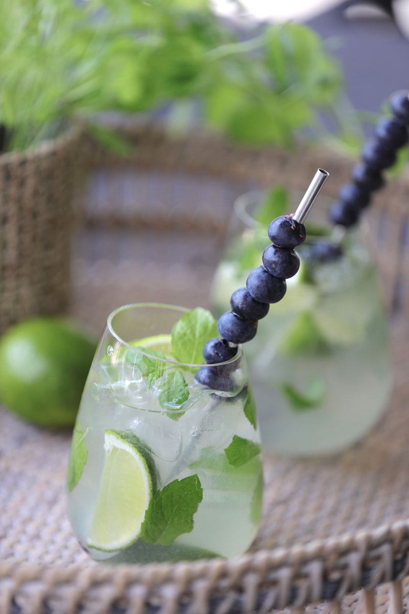 My recipe: Blueberry Vodka Mojito