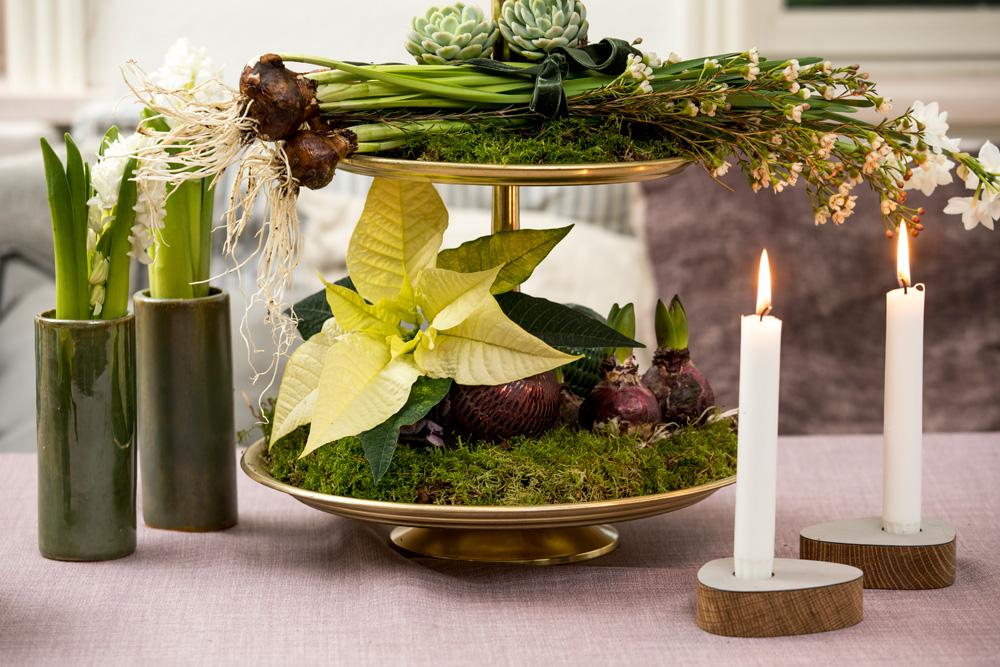 Etasjefat med julestjerner, løkblomster, mose, kongler og juletrepynt.