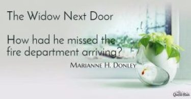 1467392188675-the-widow-next-door-how-had-he-missed-the-fire-department-arriving