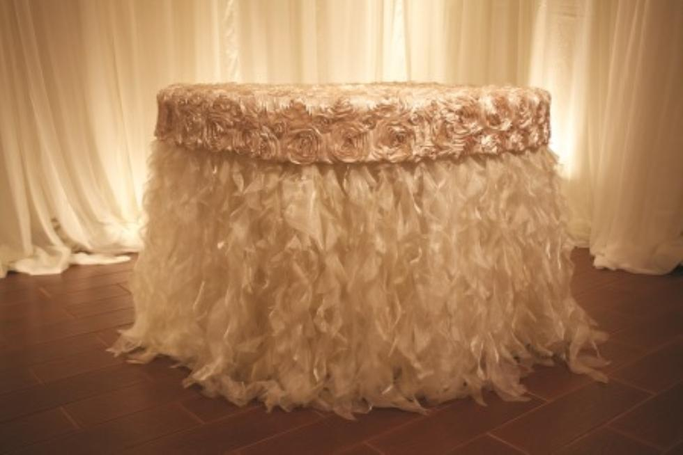 Mariannes Rentals  Curly Willow Sparkle Organza Ivory