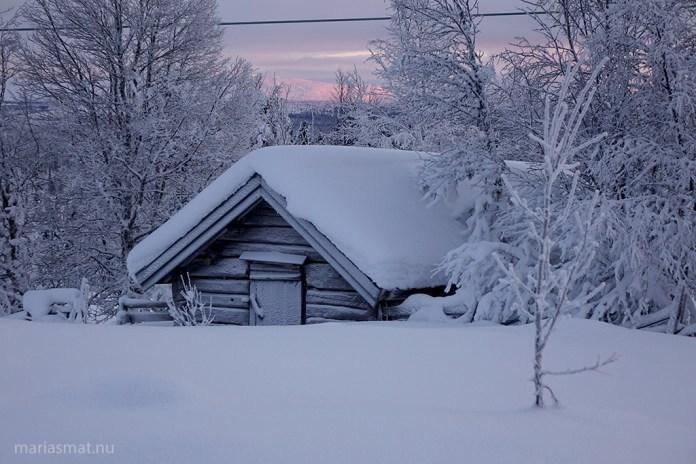 Hallå vintern