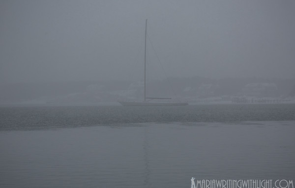 vineyard photography, snowy sailboat