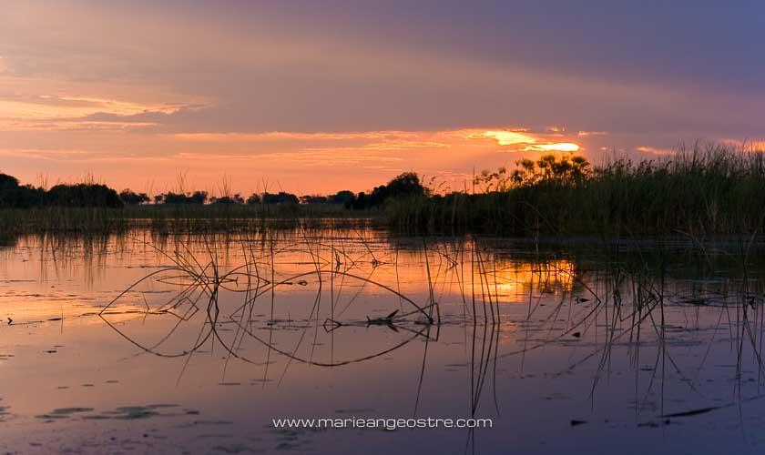 Botswana, coucher de soleil sur l'Okavango © Marie-Ange Ostré