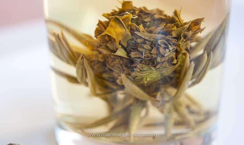 Australie, fleur de thé achetée à Sydney (New South Wales) © Marie-Ange Ostré