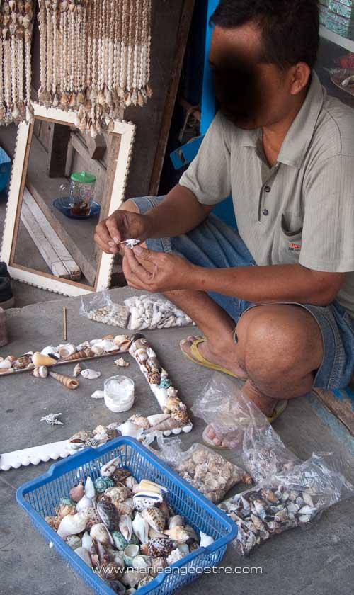 Indonésie, coquillages porcelaine © Marie-Ange Ostré