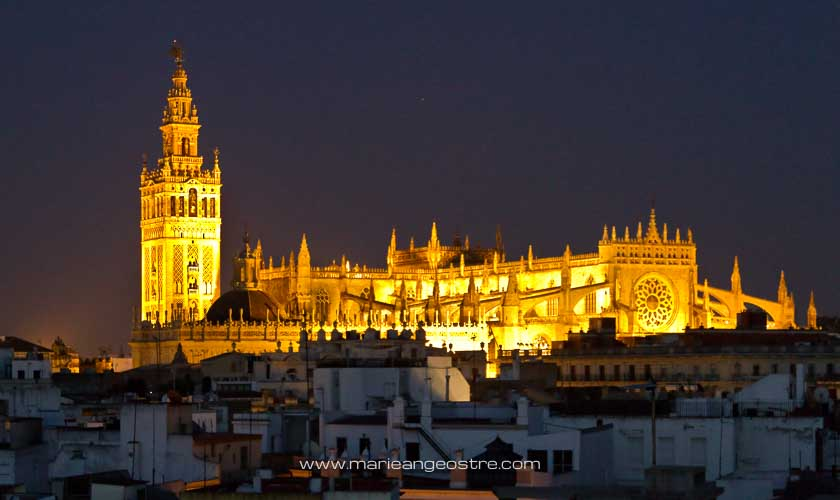 Espagne, cathédrale de Séville de nuit © Marie-Ange Ostré