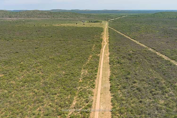 Namibie, route ou piste dans le Kalahari © Marie-Ange Ostré