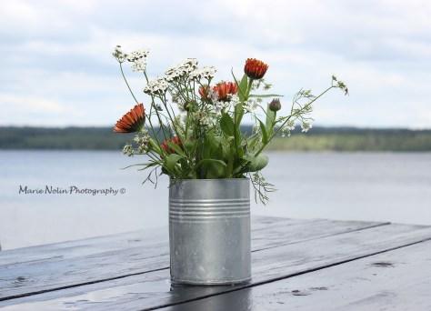 Murikka-middag-blommor