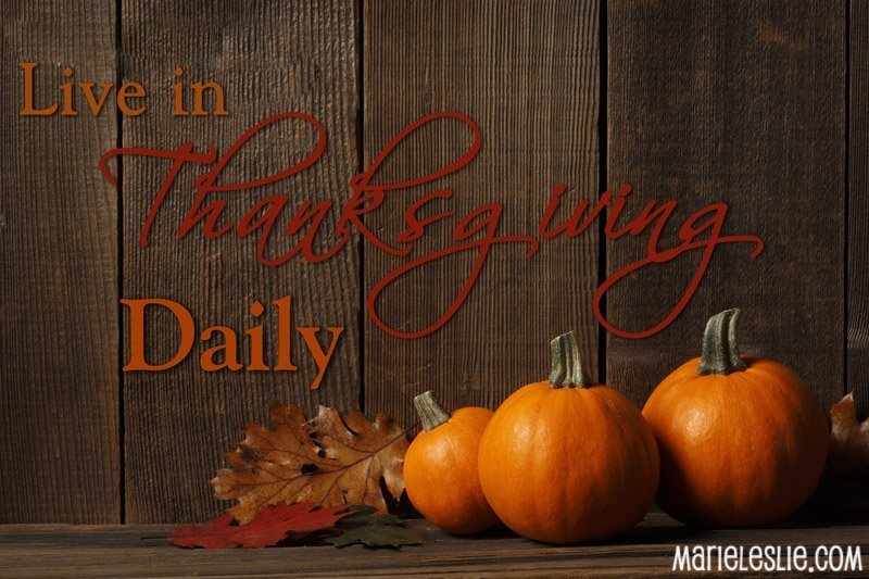 Live in Thanksgiving Daily-Favorite Thanksgiving Quotes