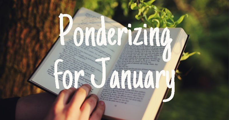 Ponderizing for January