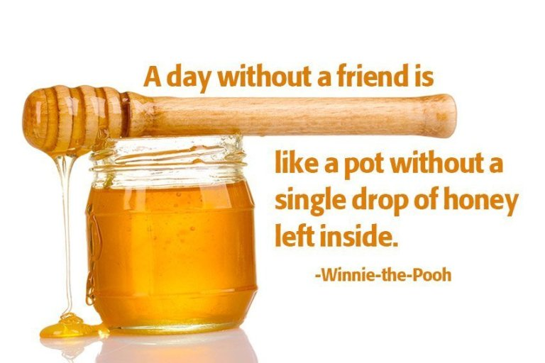 A day without a friend is like a pot without a single drop of honey left inside. Winnie-the-Pooh
