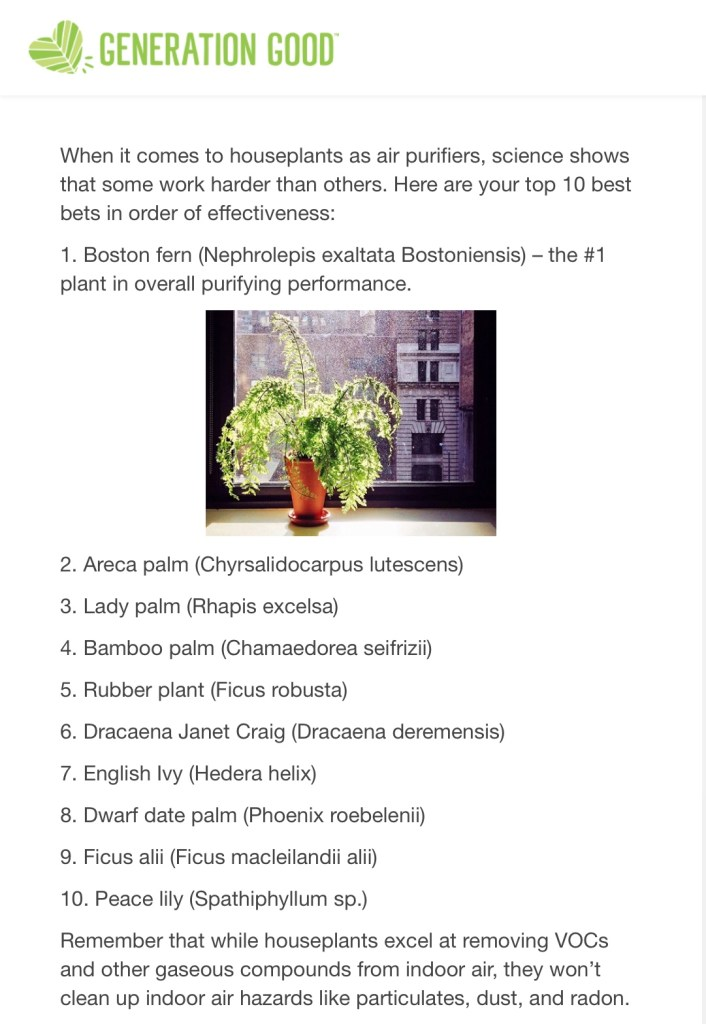 Generation Good Houseplants Chart (Spring Cleaning Your Body)