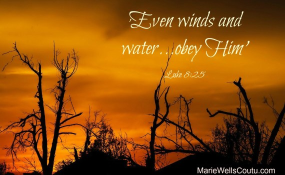 """Even winds and water...obey Him."