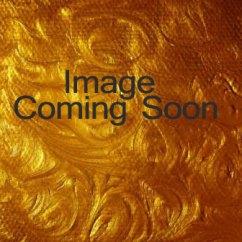 Modern Kitchen Knobs Makeover Ideas Shop Persian Samovar /electric Tea Kettle Vintage Style ...