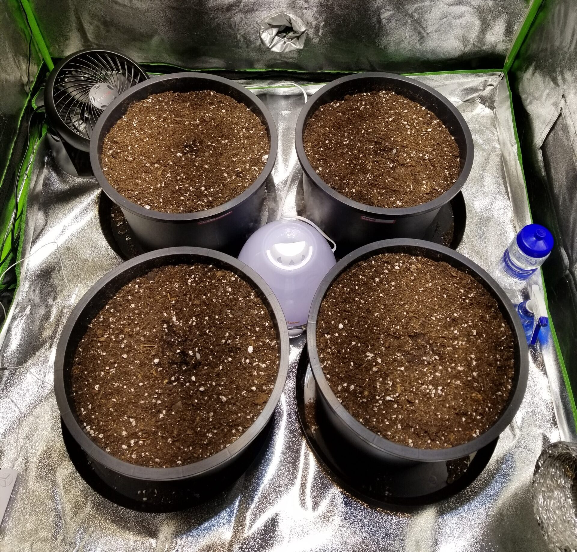 Growing Mediums for Cannabis Plants