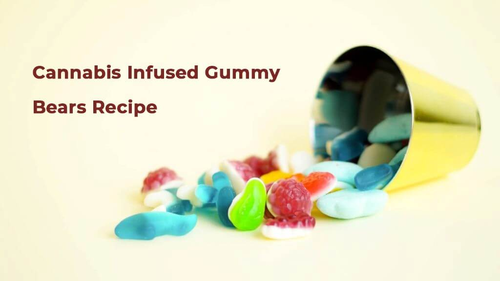 How to Make Cannabis Infused Gummy Bear Recipe