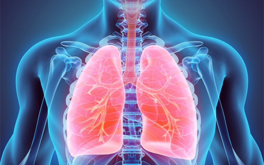 Image result for Nerve Damage Affecting the Lungs in Fibromyalgia