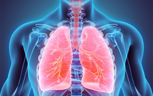 Image result for New Study : Nerve Damage Affecting the Lungs in Fibromyalgia