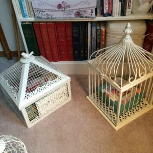 Two Bird Cages of Several ~ 2013