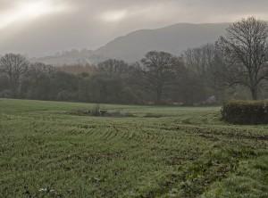 Hambledon hill from New Cross this am.