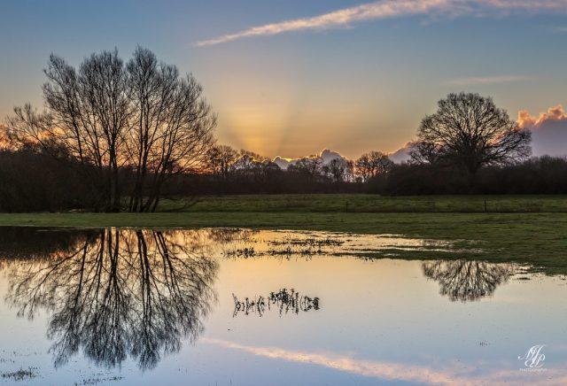 Flooded field near Hanford