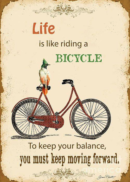 laminas bicicletas (16)