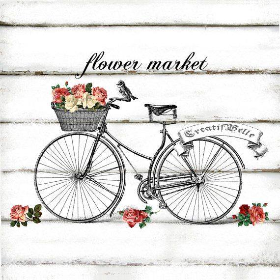 laminas bicicletas (27)