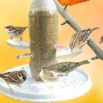 DIY comedero para pájaros reciclando materiales