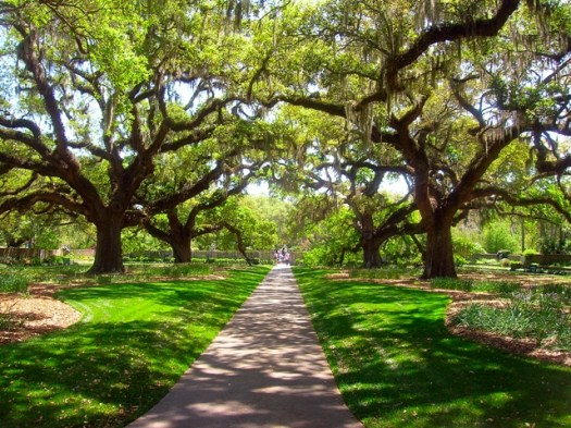 brookgreen gardens, honeymoon package, romance package