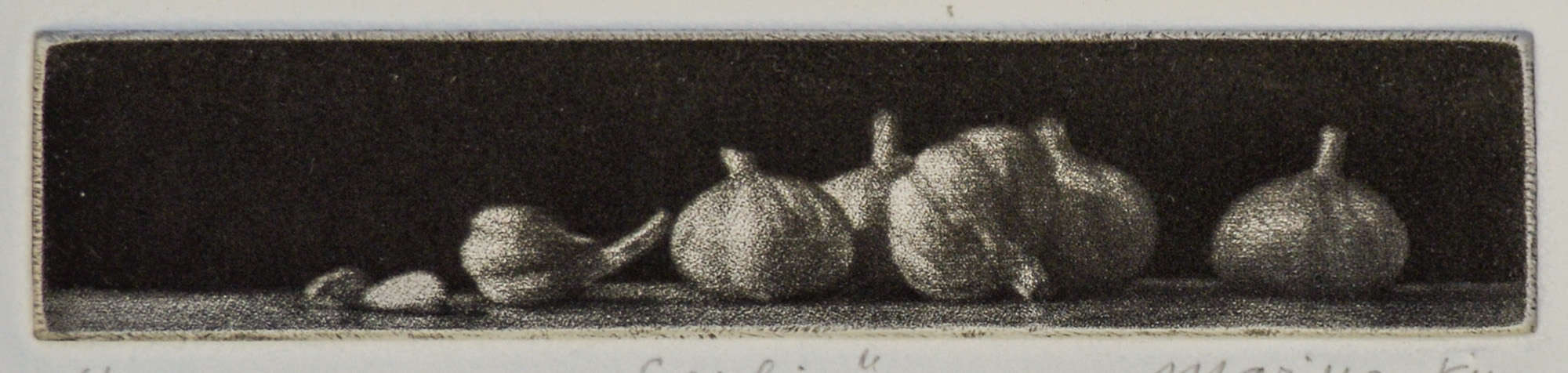 """Garlic"" - Picture of several garlic globes on a black background. Original print mezzotint by painter-printmaker Marina Kim"