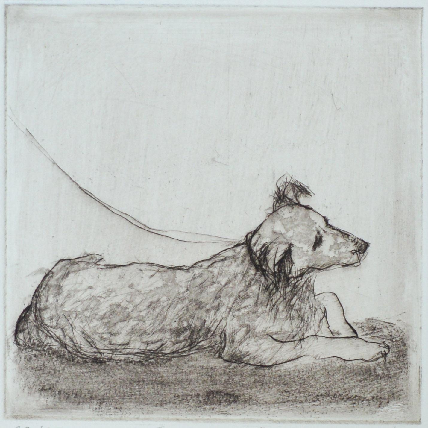 """Shopping"" - drawing of a dog lying down waiting. Original print drypoint by painter-printmaker Marina Kim"