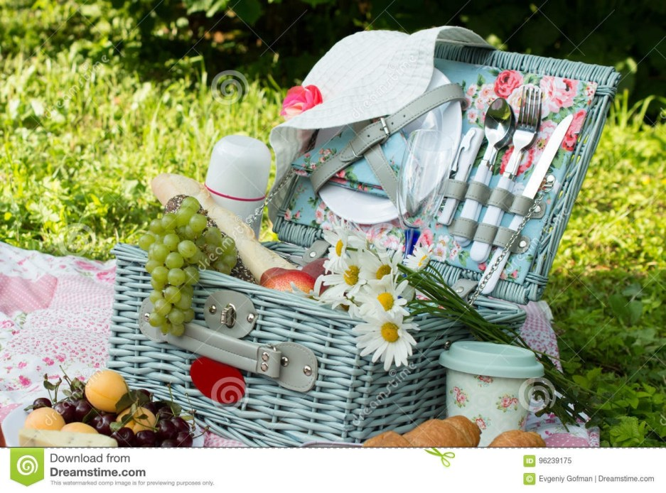 497 chic picnic photos free royalty free stock photos