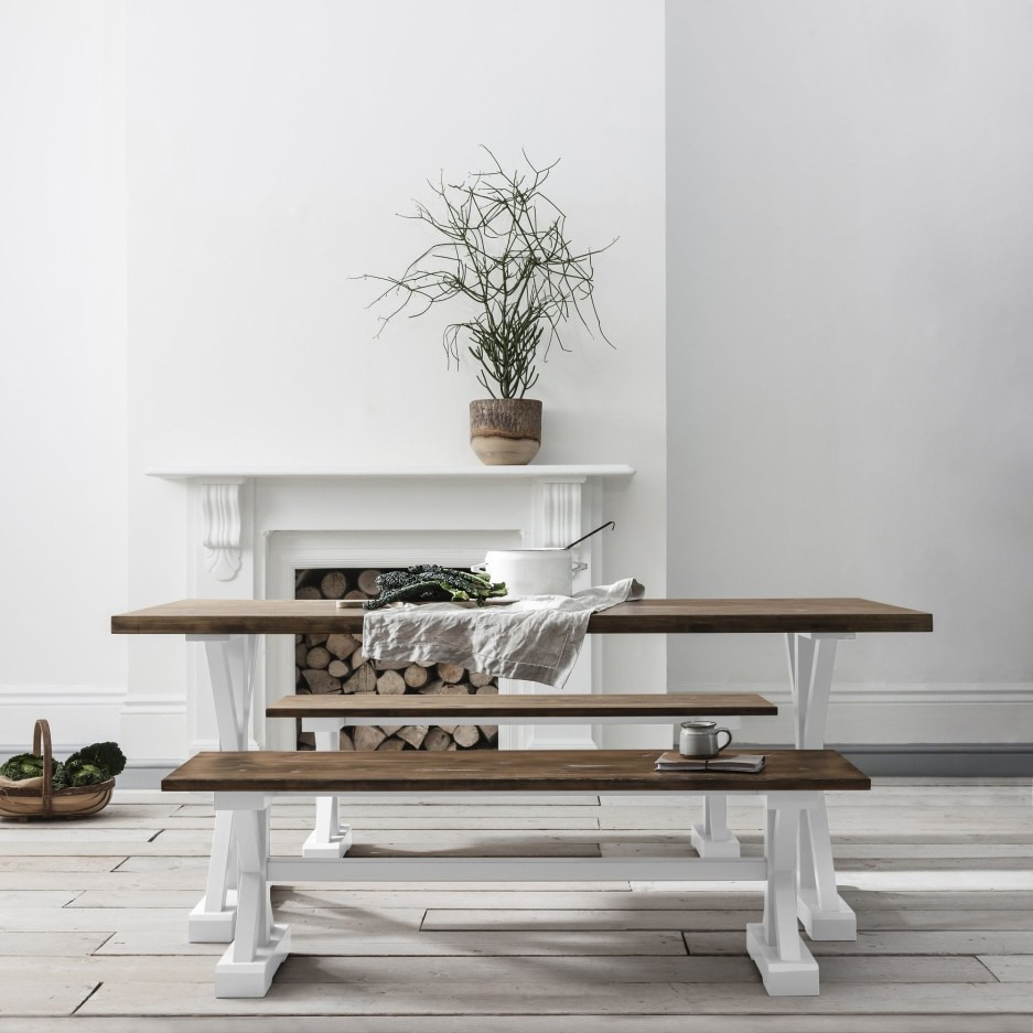 canterbury farmhouse table and 2 benches in white and dark pine