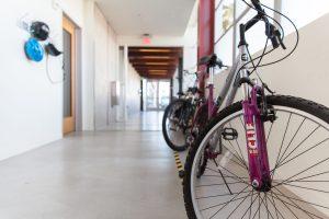 clif_Bikes in Hallway H13