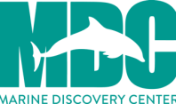 Image result for marine discovery center new smyrna beach fl