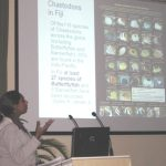 2008 Great Fiji Butterflyfish Count Results presented at the Fiji Islands Conservation Science Forum 5th - 7th August 2009