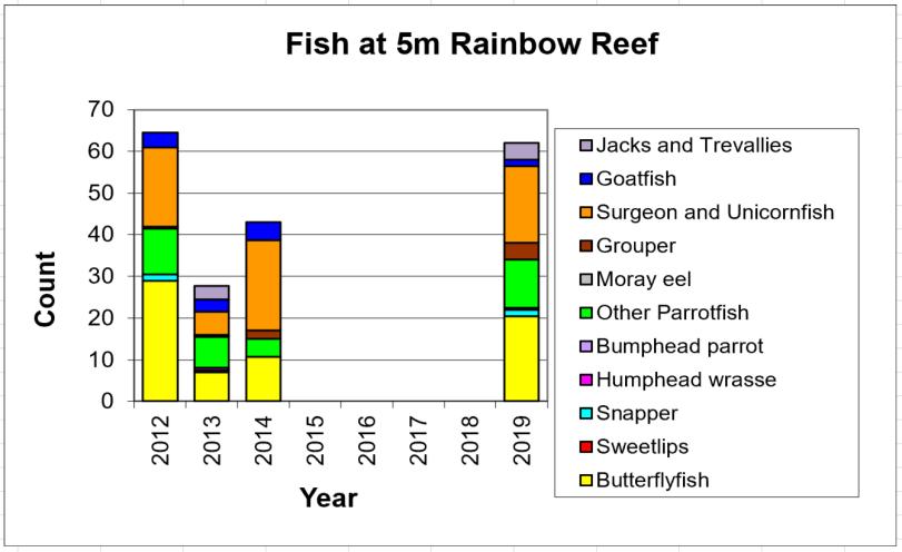 Figure 10:  Fish 5m -  Taveuni - Rainbow Reef